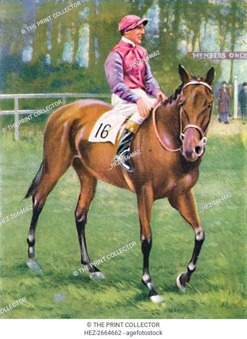 Zoltan, Jockey: M. Beary', 1939. Artist: Unknown