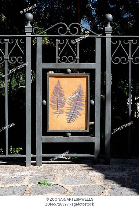 Gate in Soller Botanic Garden by wrought iron and decor with two fern leaves