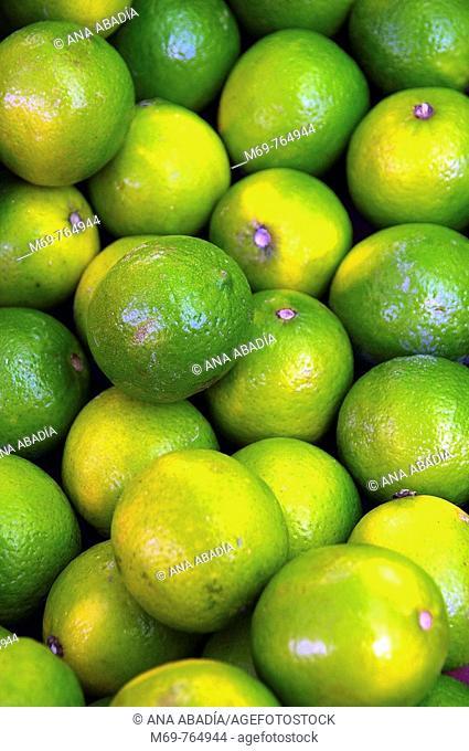 Limes for sale at market, Santanyi. Majorca, Balearic Islands, Spain
