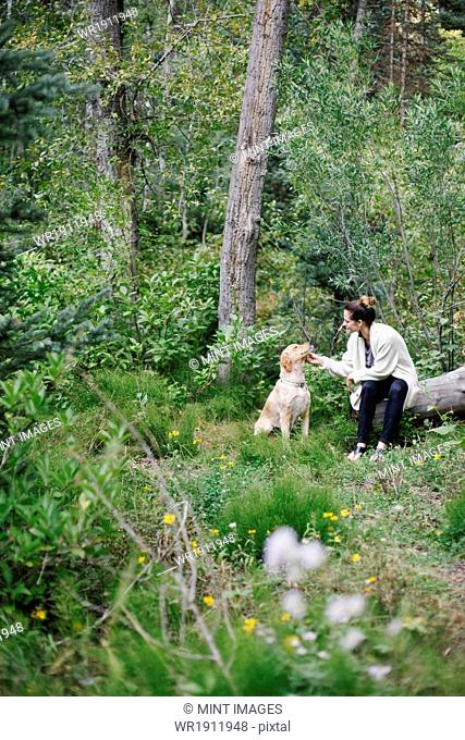 A woman seated on a log patting her retriever dog