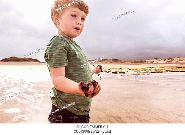 Young boy on beach, holding wet sand, Santa Cruz de Tenerife, Canary Islands, Spain, Europe