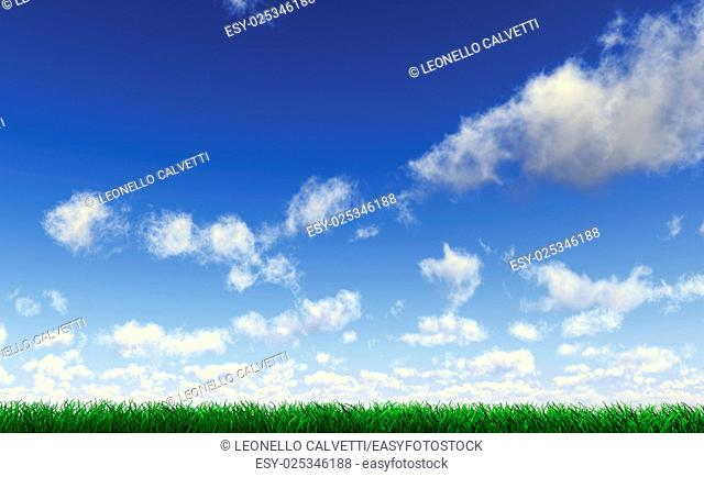 Grass viewed from a side at ground level, with blue sky with cumulus clouds