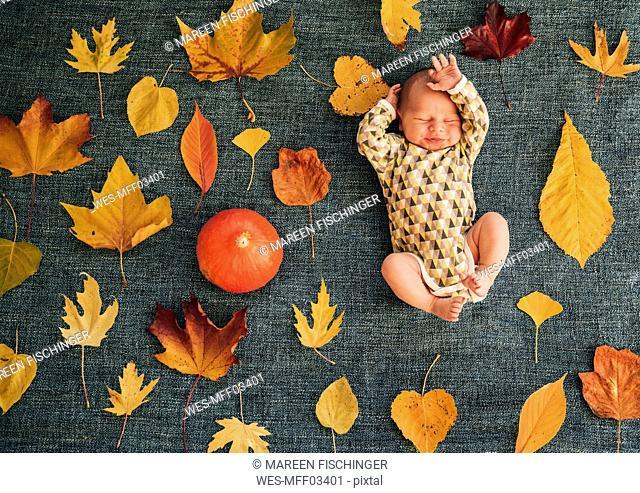 Newborn baby between autumnal leaves