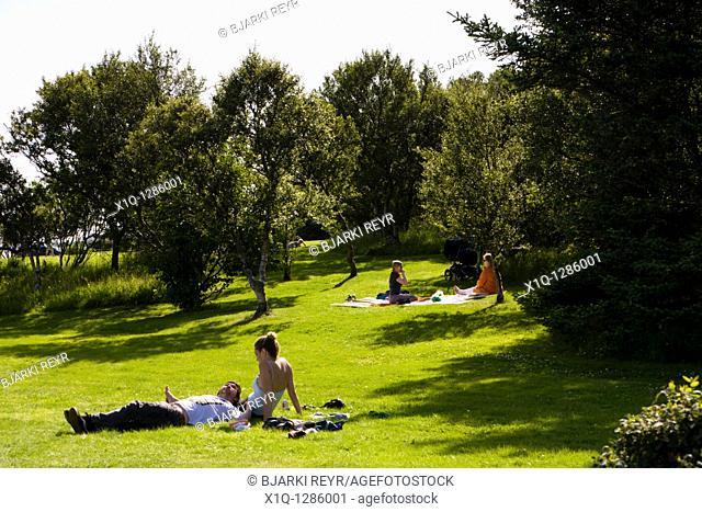 People relaxing in a public park by Tjornin lake  Reykjavik Iceland