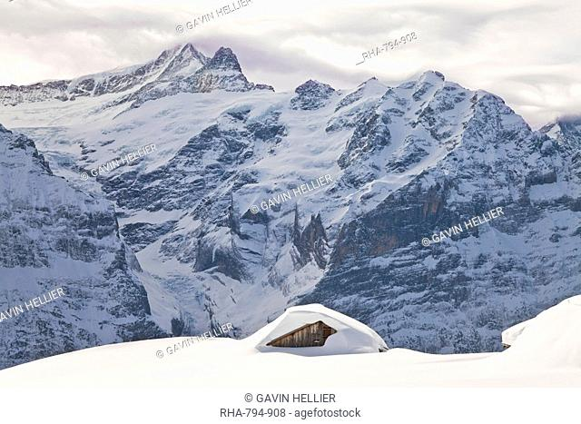Heavy fall of snow in front of the North Face of the Eiger, Grindelwald, Jungfrau region, Bernese Oberland, Swiss Alps, Switzerland, Europe