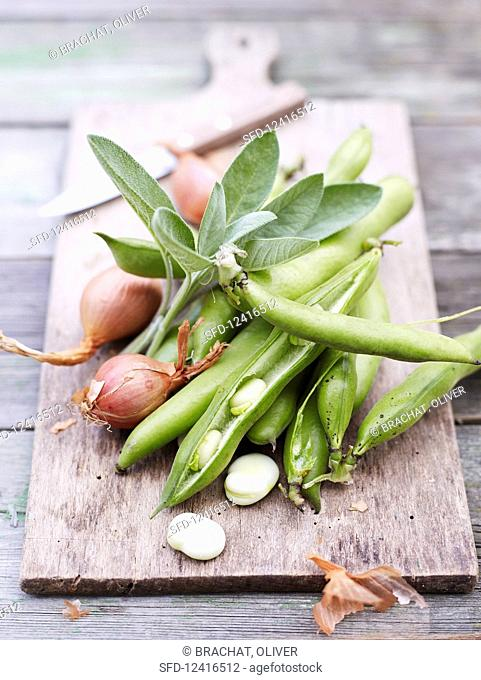 Broad beans, shallots and sage on a chopping board