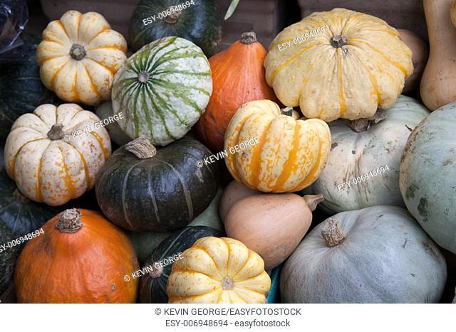 Pumpkins for sale on Market Stall