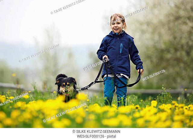 Germany, Baden Wuerttemberg, Portrait of girl walking with dog in meadow