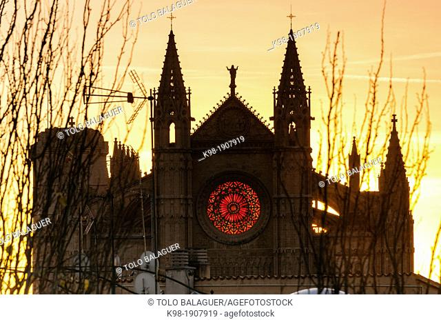 lumination by sunrise the rosette of the main facade, Winter Solstice, Mallorca Cathedral, XIII Century, Historic-Artistic, Palma, Mallorca, Balearic Islands
