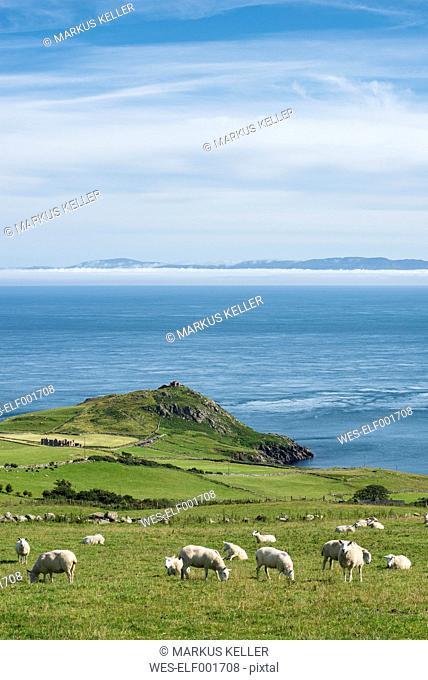 Northern Ireland, County Antrim, View from Torr Head to scotish coast