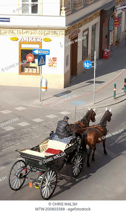 Horse drawn carriage Vienna street from above