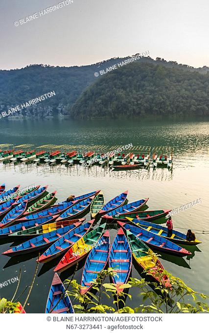 Rowboats, Phewa Lake, Pokhara, Nepal