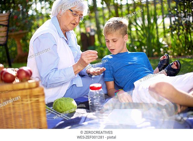 Grandson and grandmother having a picnic in park
