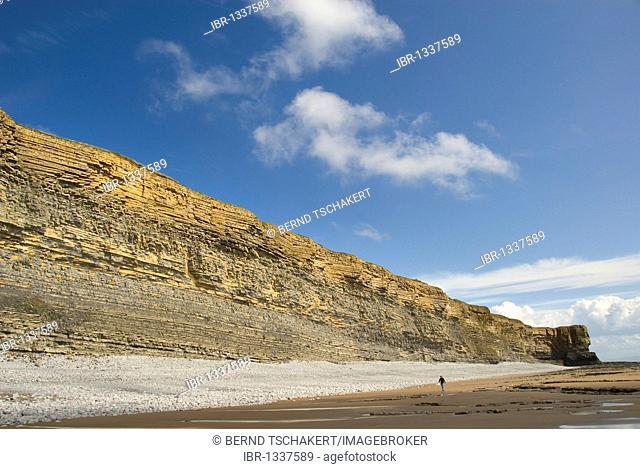 Person, cliffs, coast, Nash Point, Glamorgan Heritage Coast, South Wales, Wales, United Kingdom, Europe