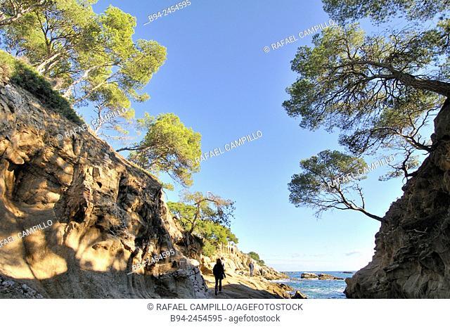 Costa Brava. Coastal región that stretches from Blanes, 60 km northeast of Barcelona, to the French border. Cap Roig coast. Girona. Catalonia. Spain