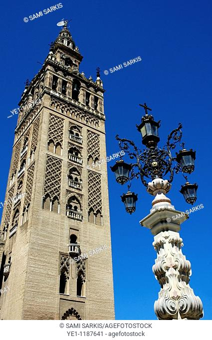La Giralda, the famous gothic tower belonging to the Seville Cathedral, Seville, Andalusia, Spain