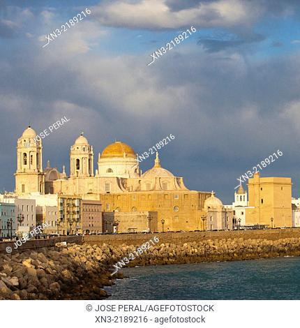 Cádiz Cathedral, Catedral de Santa Cruz de Cádiz, Promenade, Campo del Sur Avenue, Atlantic Ocean, Cádiz City, Andalusia, Spain, Europe
