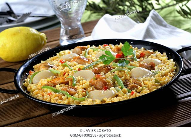 Garden made with vegetables paella with chicken