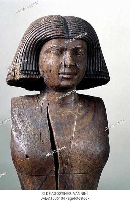 Ka-Aper's wife, 2475 BC, wooden bust from the Necropolis of Saqqara. Egyptian Civilisation, Old Kingdom, Dynasty V.  Cairo, Egyptian Museum