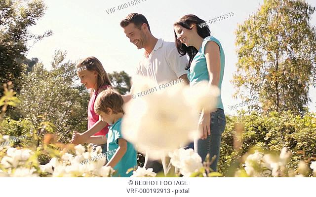 Family walking in park with white flowers in foreground