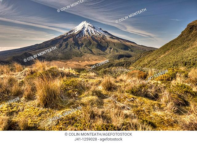 Mt Egmont / Taranaki from Pouakai Range, alpine shrubs,and tussock covered slopes, Taranaki