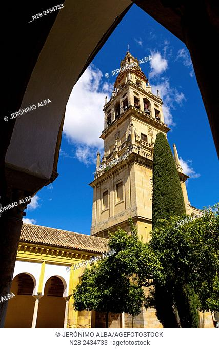 Alminar tower, Mosque-Cathedral, Cordoba, Andalusia, Spain