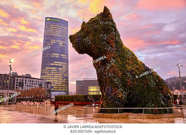 Puppy sculpture by Jeff Koons, Iberdrola tower, Guggenheim Museum, Bilbao, Bizkaia, Basque Country, Spain, Europe
