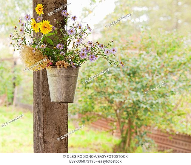 Still life from wild flowers on natural background