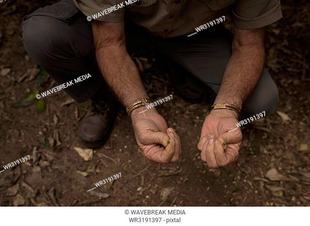 Farmer holding seed in the farm