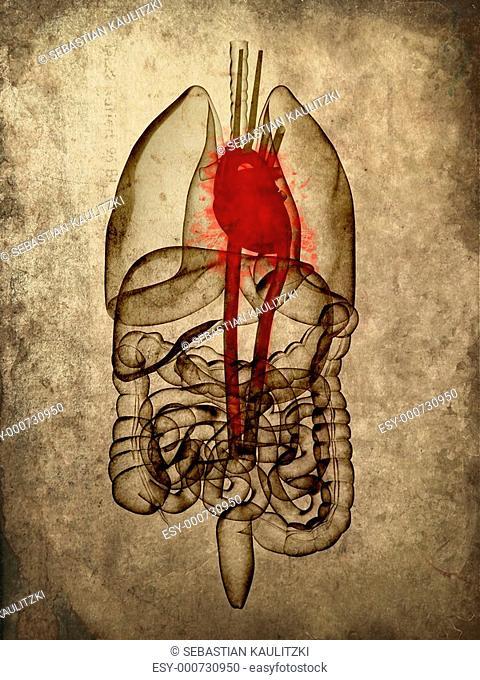 grunge organs