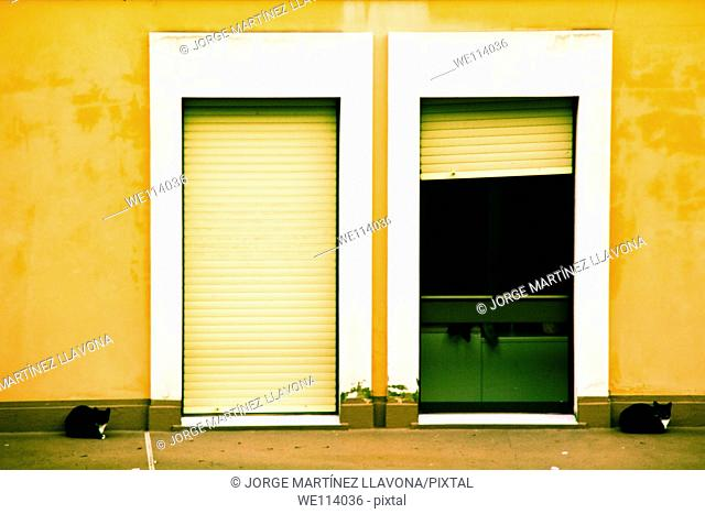 Two cats sitting at the entance of a house