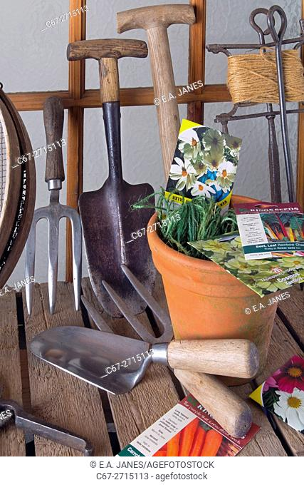 Garden tools and seed packets laid out in potting shed