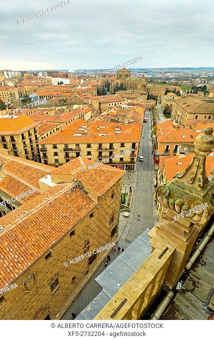 Casa de las Conchas and City View from Bell Tower of La Clerecía,Traditional Architecture, Salamanca, UNESCO World Heritage Site, Castilla y León, Spain, Europe