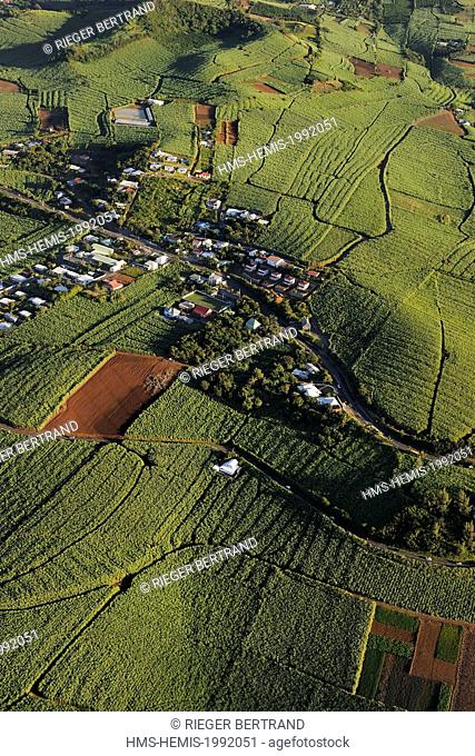 France, Reunion Island (French overseas department), southern coast vers Petite Ile, sugar cane fields (aerial view)