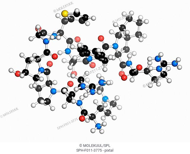 Icatibant hereditary angioedema drug molecule (orphan drug). Atoms are represented as spheres with conventional colour coding: hydrogen (white), carbon (black)