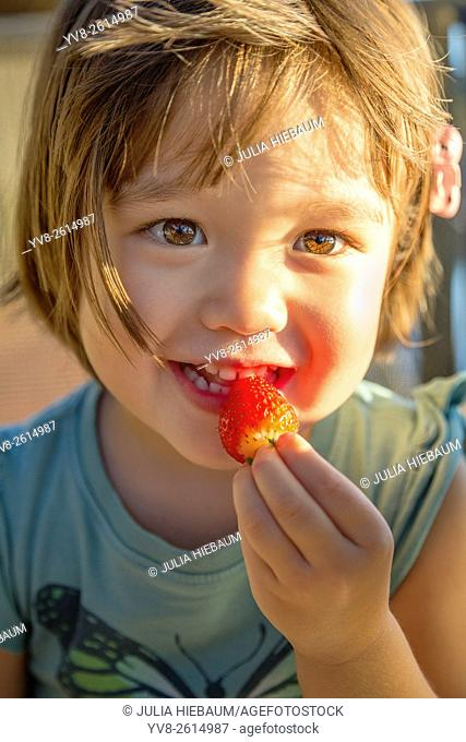 Toddler eating a strawberry