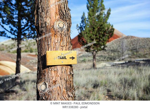 Sign pointing towards hiking trail
