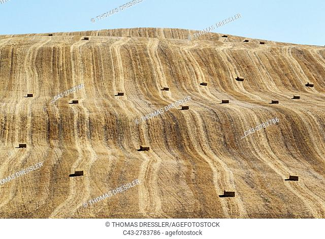 Bales of straw and abstract patterns in a cornfield after the wheat harvest. In the Campiña Cordobesa, the fertile rural area south of the town of Cordoba