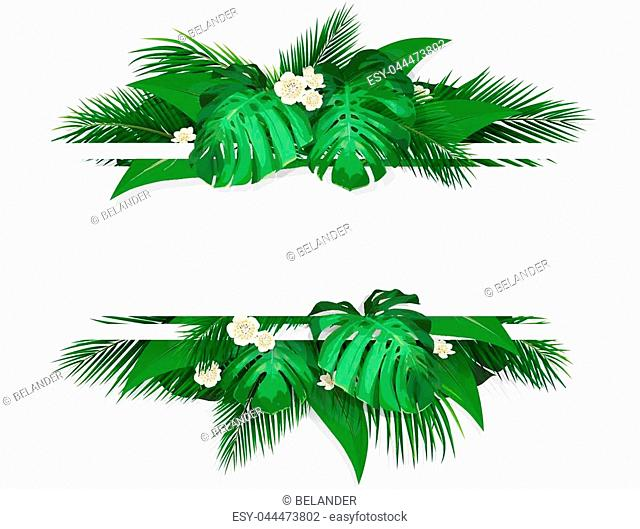 Exotic tropical leaves. Banner with space for text. Frame with exotic plants monstera, banana palm tree and flowers