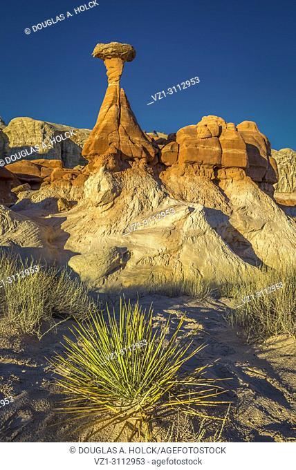 Desert bush anchors the scene of the iconic toadstool hoodoo in Paria Rimrocks Toadstool Hoodoos, Grand Staircase-Escalante National Monument, Utah, USA