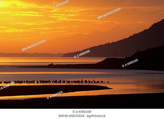 Sunrise at the Kerkini-lake, Greece