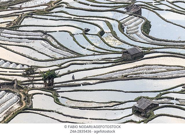 Sunset over YuanYang rice terraces in Yunnan, China, one of the latest UNESCO World Heritage Sites